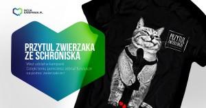 sama koszulka - kot